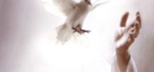 espiritu-santo